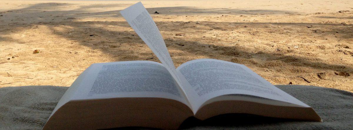 Les livres de Christine Calmeau